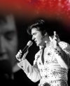 Elvis  - Das Musical in Hannover  -- Tickets sichern, wird bestimmt voll !!