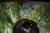 """360° - PANORAM A """"AMAZONIEN"""" VON  YADEGAR ASISI IM """" PANORAMA AM ZOO"""" IN  HANNOVER ERÖ FFNET"""